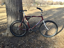 1984 Mongoose ATB single speed