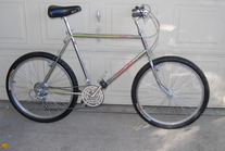 1986 Diamond Back Ascent