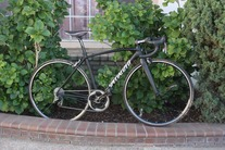 Specialized Allez Race photo