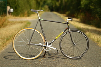 Alain Michel French pursuit bike