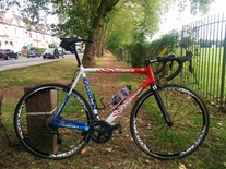 Cannondale CAAD5 Stars and Stripes photo