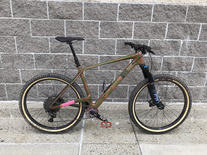 China Carbon hardtail