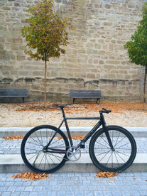 Cinelli Parallax 2015 photo