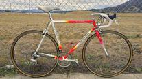 Colnago Classic photo