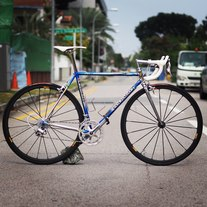 Colnago Master Olympic (blue)