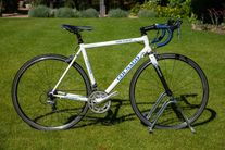 Colnago Ramarro photo
