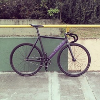 Colossi Low Pro - Custom Color