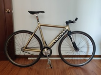 colossi low pro gold paint