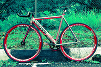 Colossi LOWPRO photo