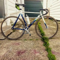 Don walker track bike