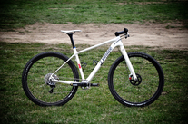 Dundee Cycles Jewell 29er