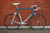 Eddy Merckx Custom Team Panasonic