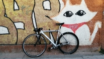 Generic alloy fixed gear photo