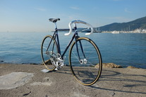 Goldsprint Colossi Rambler Track