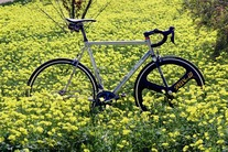 Litespeed Team Issue Titanium