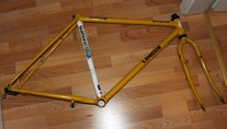 Longus Competition Pro 2000 MTB  (1991)