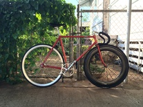 Makino Track NJS Gold Flaked