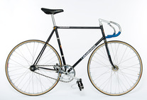 Nagasawa Black Rainbow Flake NJS photo