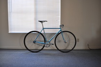 NJS Level 50.5cm photo
