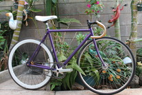 Purple kilo tt (7th) photo