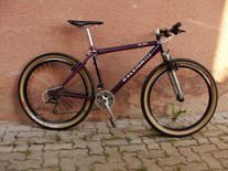 Raleigh M80