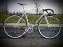 Rich Adams Single Speed Street
