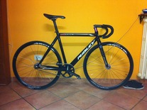 Ridley Oval 7D6.1