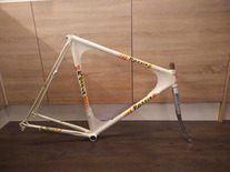Rossin Futura CX TT / Pursuit