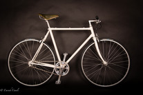 Singlespeed Oyster-White
