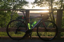 Specialized Allez 54