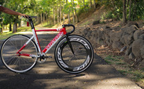 Specialized Langster Pro photo