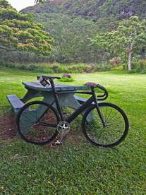 Specialized Langster Pro, Hawaii photo