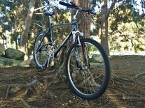 Tamarac hardtail photo