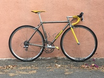 Titanium Banana Litespeed Classic photo