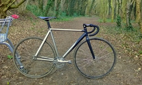 Wittson Titanium Custom Track photo