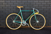 YANAGISAWA NJS photo