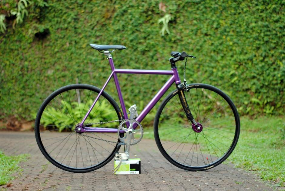 ALPHALAB BATANTRAX 2013 Purple Metalic