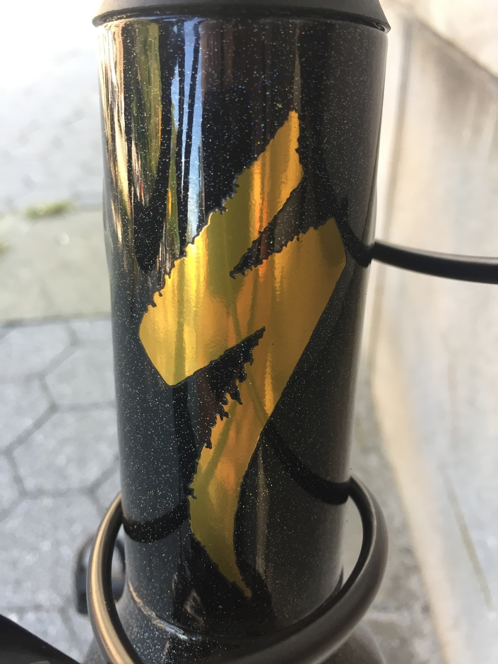 Specialized Allez Sagan Wc Edition 17 Pedal Room