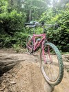 1986.5 Cannondale Team Pepto-Bismol photo