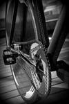 Affinity kissena Carbon look photo