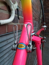 Bottecchia SCIC - 90ties Makeover photo