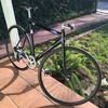 Cannondale Track (Black) photo