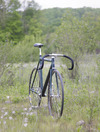 cannondale track / black shamal track photo