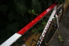 Colnago Dream lux (Custom paint) photo