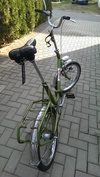 05 Elite folding bike [Rest In Pieces] photo
