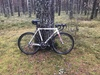 Forme Hiver Cyclocross photo