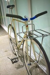 Gold/Rainbow Flake Samson NJS photo