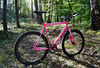 Loca Bike Fixed Gear Tracklocross FGCX photo