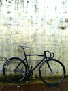 Pinarello Diesel photo