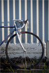 Specialized Allez Sport photo